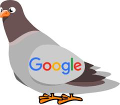 کاربرد الگوریتم کبوتر در سئوسایت